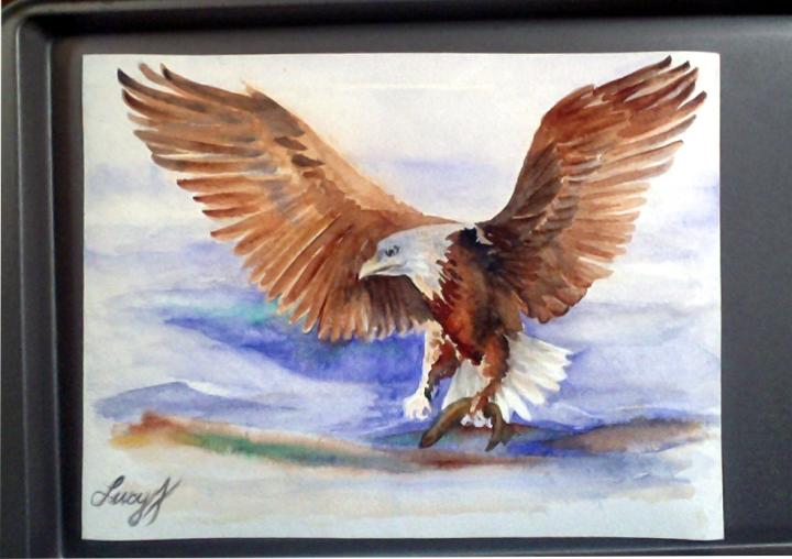 Stargazers Eagle