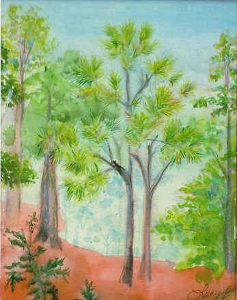 Watercolor of a mostly black cat walking a branch high in a pine tree, amongst a group of trees on a red clay hillside.