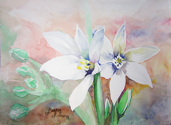 "Finished watercolor painting ""bright eyes"" of bethlehem star flowers."