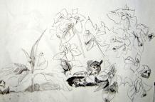 MorningFlowers sketch