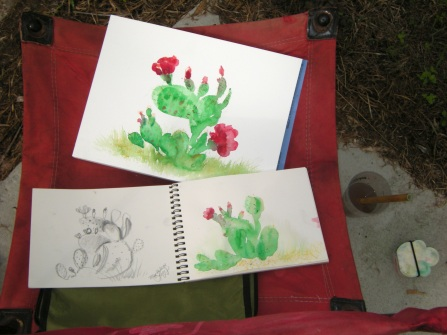 20140528 Prickly Pear Blossom Paintings