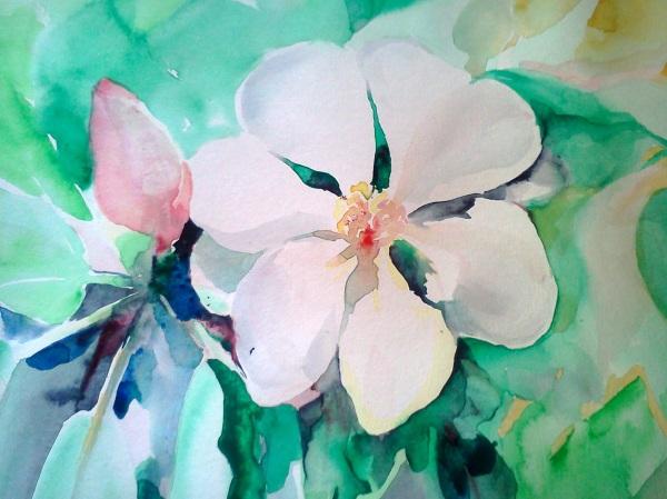 20140624 Magnolia