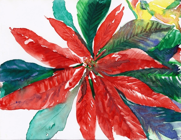 Poinsettia Card 2014
