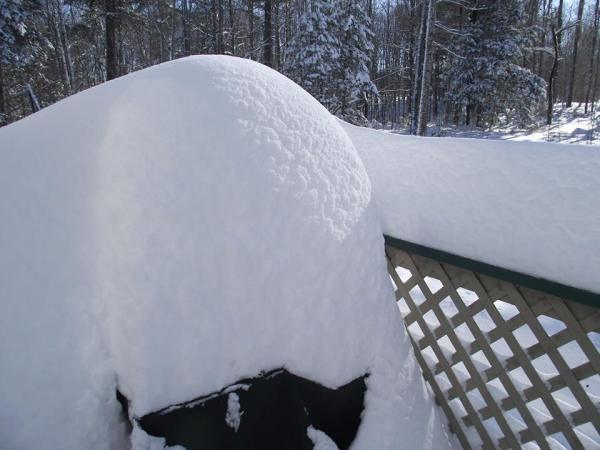 99 inches of snow this winter already!