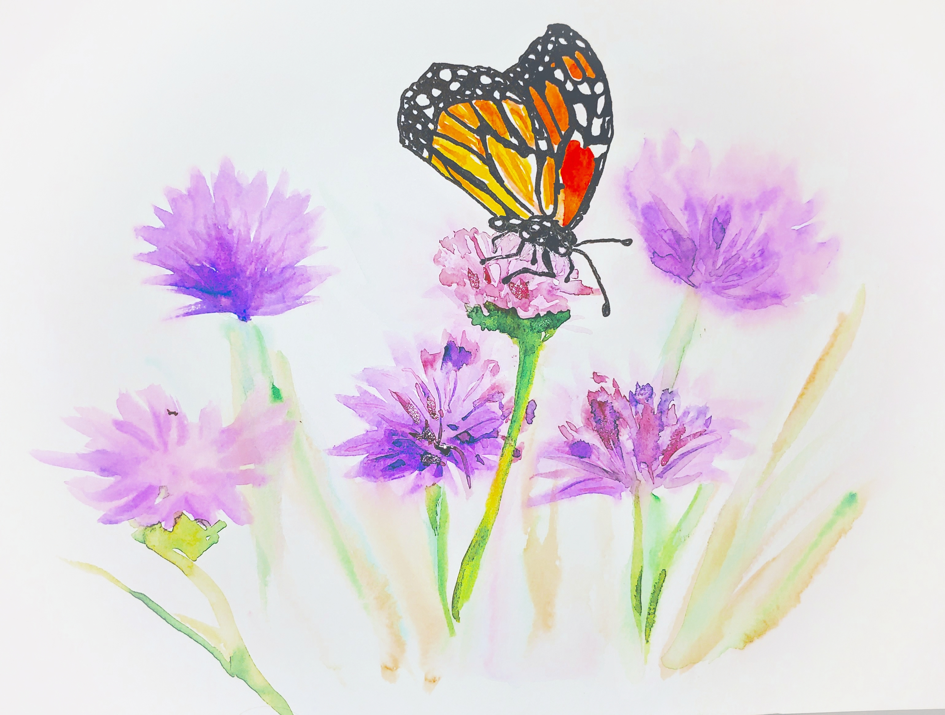 Watercolor by Lucy J Monarch butterfly on a purple clover.