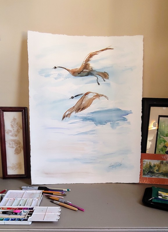 Two Canadian geese in flight, an original watercolor painting by Lucy Jartz, completed on 02/02/2020. (Canadian Geese are Snowbirds) Size  22 by 30 inches on Arches 400 lb cold press paper.